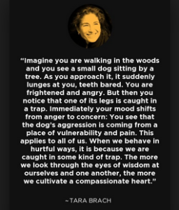 aggression trap quote by tara branch